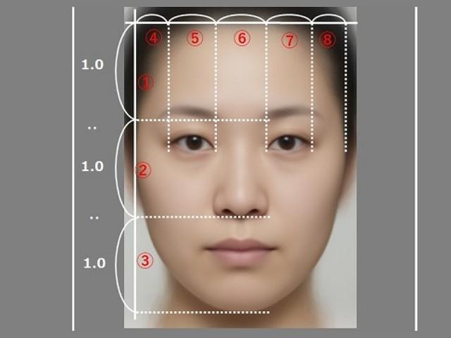 顔の比率画像